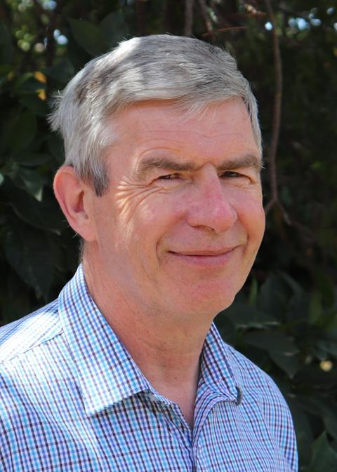 Professor David Perkins