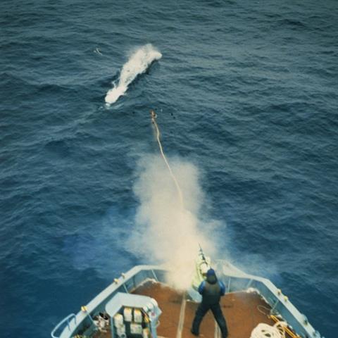 A whaler takes aim