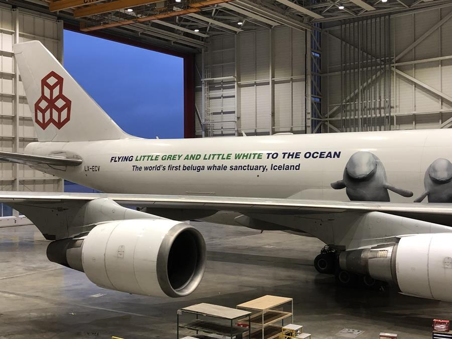 The plane that will take two belugas to sanctuary