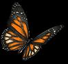 mariposas papillon