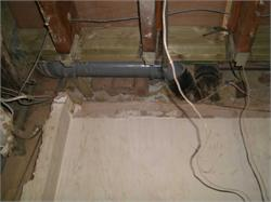 exposed floor/ceiling structure