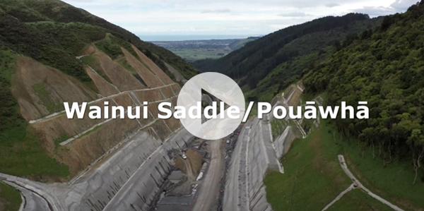 Wainui Saddle/Pouāwhā