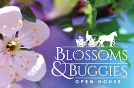 Blossoms & Buggies Open House
