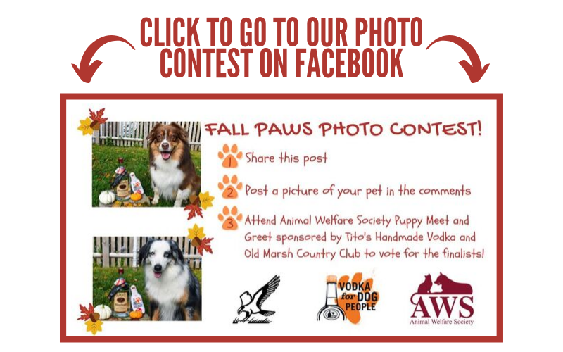 Click here to go to our photo contest on Facebook!