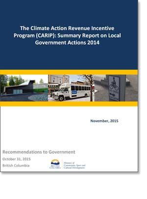 CARIP Public Report 2014 Summary