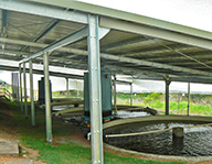 Metal roof over trout hatchery ponds