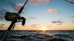 Image of person holding fishing rod near the ocean